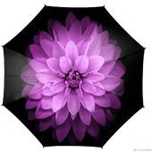 """Зонт женский с росписью """"Красота древнего мира"""""""