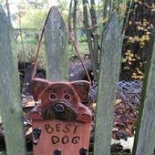 фото: Для домашних животных (боксер)