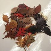 Листья из натуральной кожи, 50 шт