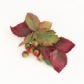 Заколка с осенними листьями и ягодами (2)