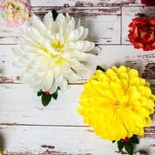 Гребешок с хризантемой