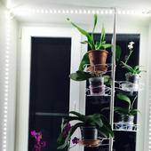 Распорка для крупных растений на 8 горшков