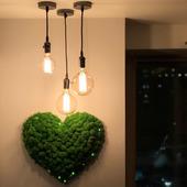 Сердце из стабилизированного мха с подсветкой