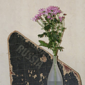 фото: Материалы для флористики