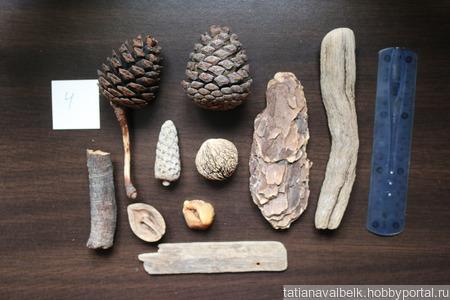 Морские находки набор 4 дерево шишки, ракушки и т.п ручной работы на заказ
