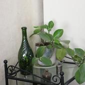 Бутылка стеклянная оливковая спиральные ребра