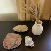 Морские камни набор 1 камешки дары моря