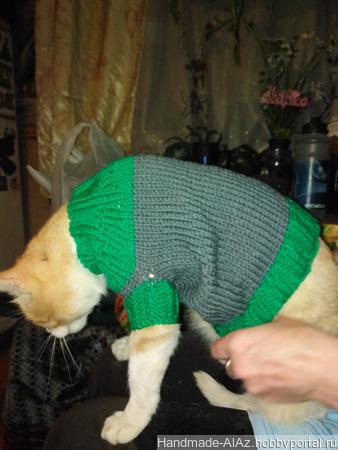 Свитер для кота ручной работы на заказ