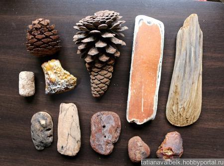 Морские находки дерево шишки и что-то непонятное набор Лот 10 ручной работы на заказ
