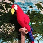 Попугай ара Кеша