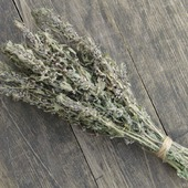 фото: Сухоцветы — букеты (пустырника букет)