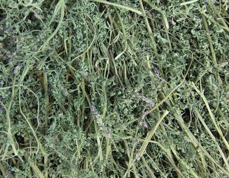Дымянка (Дикая рута) лекарственная. Трава. Цена за 1 г. ручной работы на заказ