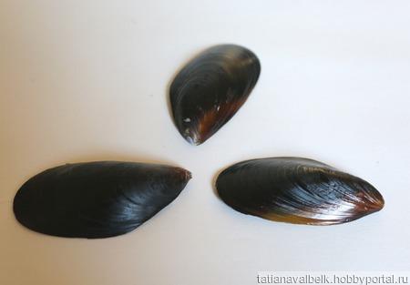 Створки раковина мидий ракушки 5-7 см ручной работы на заказ