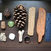 Морские находки набор 3 дерево шишки, ракушки и т.п