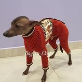 """Комбинезон и свитера для собак """"Перуанские мотивы"""""""