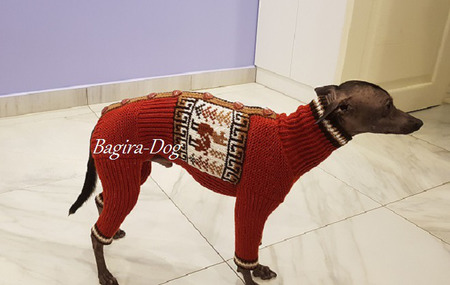 """Комбинезон и свитера для собак """"Перуанские мотивы"""" ручной работы на заказ"""