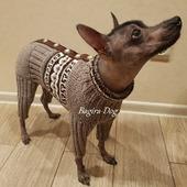 фото: Для домашних животных (свитер для голых собак)