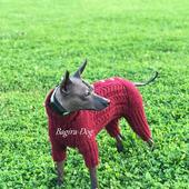 Зимний комбинезон для Ксоло, Перуанских собак