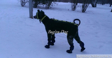 Зимний комбинезон для Ксоло, Перуанских собак ручной работы на заказ