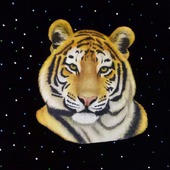 "Знак зодиака ""Тигр"""