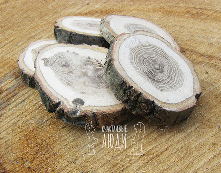 Спилы дуба для декора и творчества ручной работы на заказ