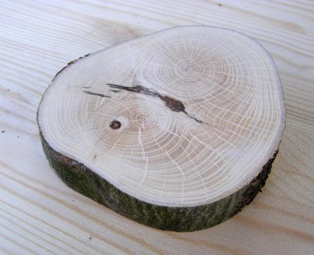 Спилы дерева для декора ручной работы на заказ