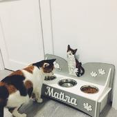 Подставка для еды и воды для собак и кошек
