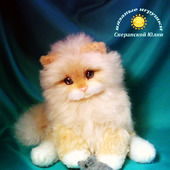 Котик Тимоша