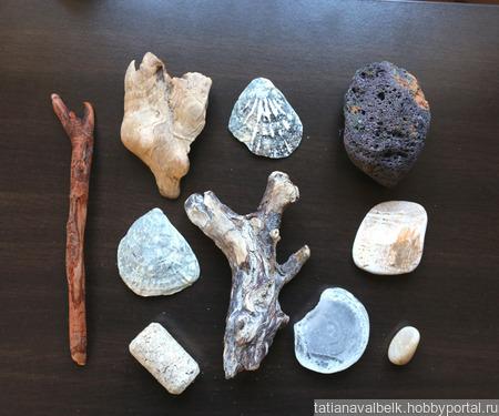 Морские находки дерево, ракушки и т.п. набор Лот 8 ручной работы на заказ
