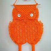 Солнечная сова