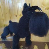 фото: собака вязаная