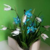 Весенние цветы в кактуснике