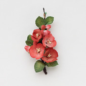Красная брошь с красными цветами айвы из фоамирана