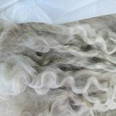 Локоны из пуха ангорской козы 20-23 см немытые