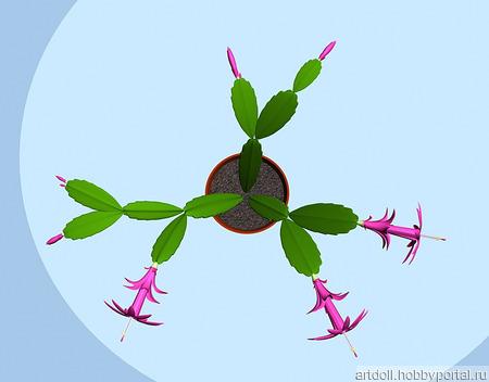 3d-модель растения Зигокактус ручной работы на заказ