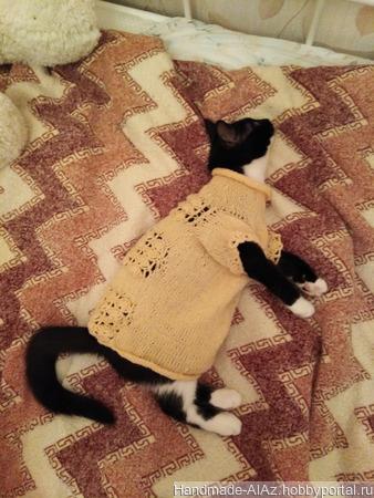 Платье для кошки ручной работы на заказ