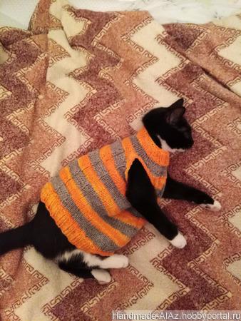 Свитер-безрукавка для кота ручной работы на заказ