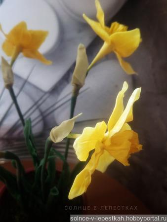 Нарциссы из холодного фарфора в кашпо ручной работы на заказ