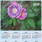 """Календарь настенный """"Розы"""""""