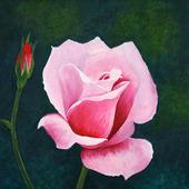 "Картина гуашью ""Роза"""