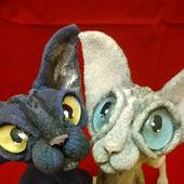 Сфинкс - лысый кот темно-серого окраса