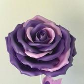 Роза интерьерная
