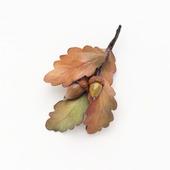 Брошь с дубовыми листьями
