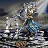 """Папертоль """"Шах и мат"""", р. 19*20, арт. РР0135"""