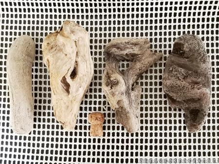Набор морского дерева дрифтвуд ручной работы на заказ