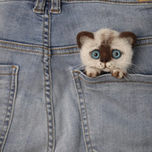 Брошь из шерсти котик сиамский