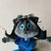 Кот летчик
